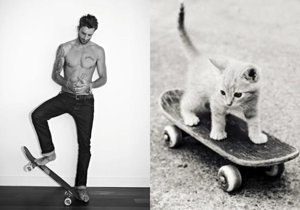 skateboard-guy-cat