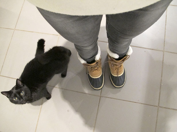 sorel_boots_black_cat